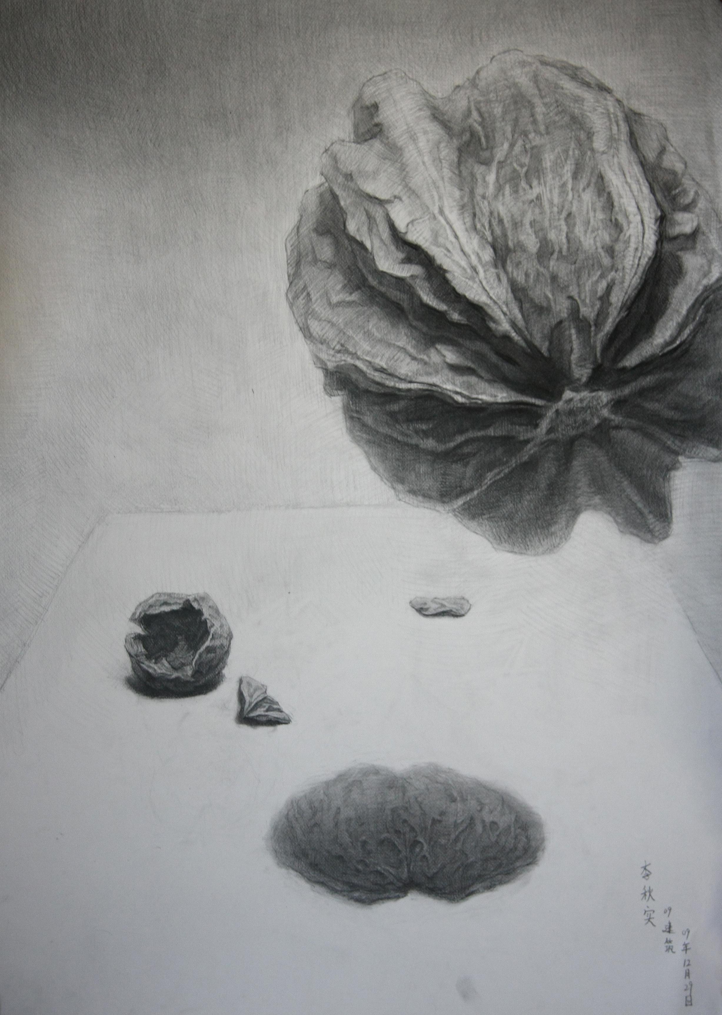 精微素描(中央美术学院)